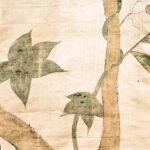 Kinu-evidenza-1200x628